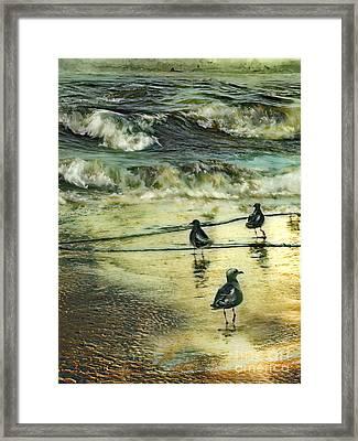 Walking At Beach Framed Print by Anne Weirich