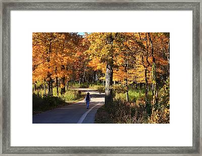 Walking Framed Print by Lyle Hatch
