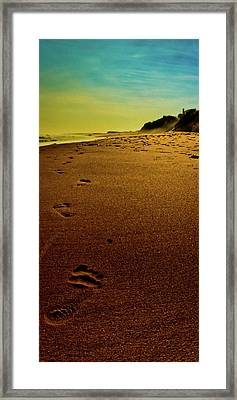 Walking Off Into The Sunset Framed Print by David Hahn