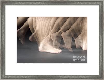 Walking Framed Print by Ted Kinsman