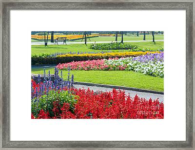 Walkway In Park Framed Print by Atiketta Sangasaeng