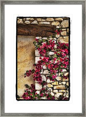 Wall Beauty Framed Print by Mauro Celotti