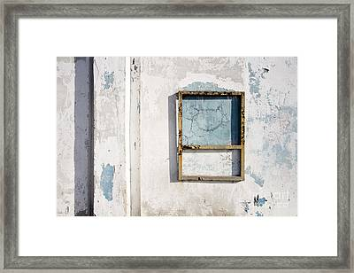 Framed Print featuring the photograph Wall With Cat Painting by Agnieszka Kubica