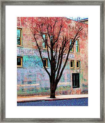 Framed Print featuring the photograph Wall Wth Secrets by Lizi Beard-Ward