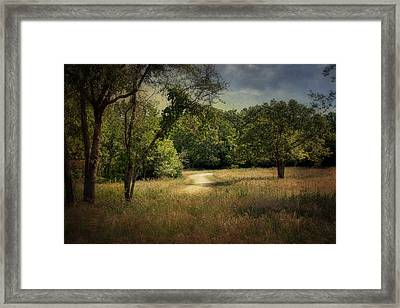 Wandering Path I Framed Print by Tamyra Ayles