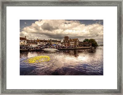 Wareham Duck Race Framed Print by Rob Hawkins