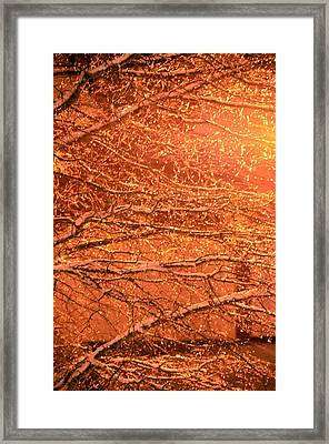 Warm Icy Reflections Framed Print by Sandi OReilly