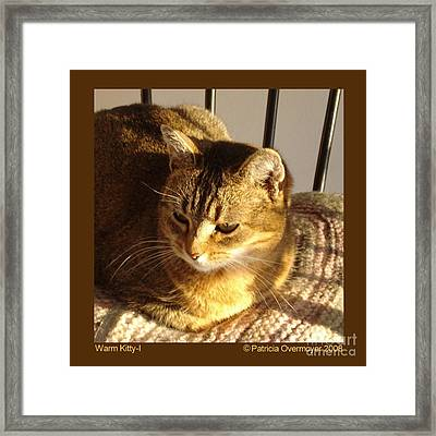 Framed Print featuring the photograph Warm Kitty-i by Patricia Overmoyer