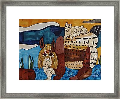 Wary Bobcat Framed Print by Stephanie Ward
