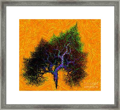 Was A Crooked Tree  Grunge Art Framed Print