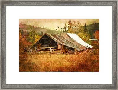 Was Once A Dream Framed Print by Mary Timman