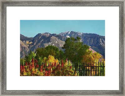 Wasatch Mountains In Autumn Painting Framed Print by Tracie Kaska