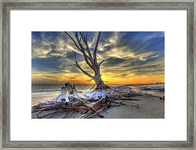 Washed Out Trees Framed Print
