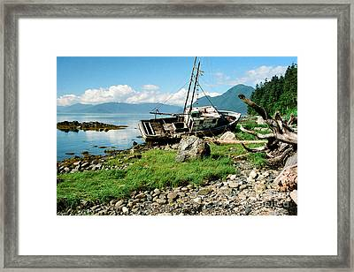 Washed Up Framed Print by Frank Townsley