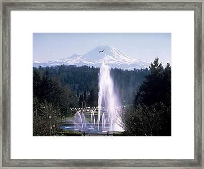 Washington Fountain To The Mountain Framed Print by University of Washington