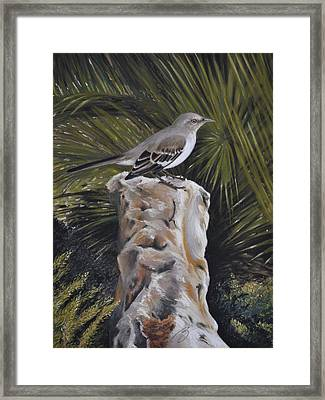Watchful Eye Framed Print by Ben Kotyuk