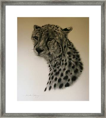 Watchful Framed Print by Lucinda Coldrey