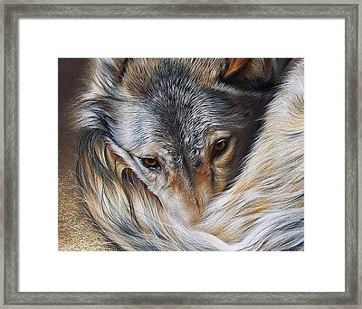 Watchful Rest -close-up Detail Framed Print by Elena Kolotusha