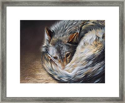 Watchful Rest Framed Print by Elena Kolotusha