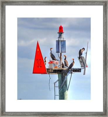 Watching All Sides Framed Print by Barry R Jones Jr