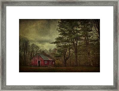 Watching Over Me Framed Print by Evelina Kremsdorf