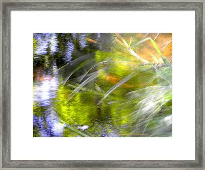 Framed Print featuring the photograph Water And Wind by Alfonso Garcia