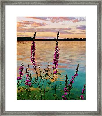 Water Colors Framed Print by Virginia Lei Jimenez