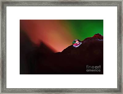 Water Droplet At Dusk Framed Print by Kaye Menner