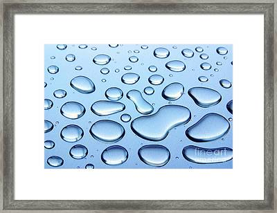 Water Drops Framed Print by Carlos Caetano