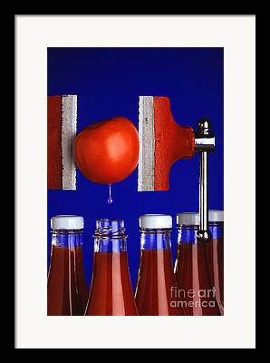 Ketchup Photographs Framed Prints