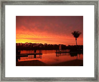 Water Fences Framed Print