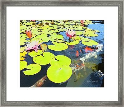 Water Lilies And Koi Framed Print by Russ Harris
