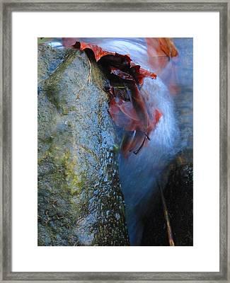 Water Maiden Framed Print by Lynn Dodds