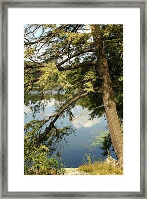 Water Framed Print by Margaret Steinmeyer