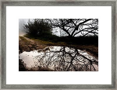 Framed Print featuring the photograph Water Mirror by Edgar Laureano