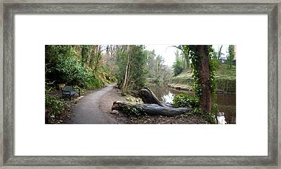 Water Of Leith Framed Print by David Armas