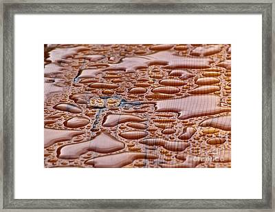 Framed Print featuring the photograph Water On Wood by Charles Lupica