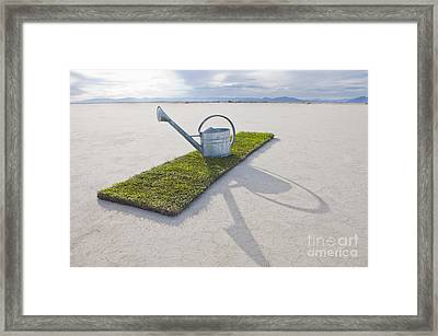 Water Pail On Strip Of Grass Framed Print by Thom Gourley/Flatbread Images, LLC