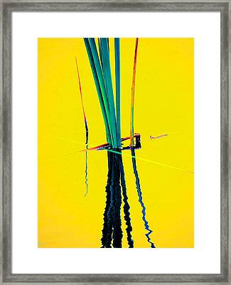 Water Reed Reflections  Framed Print by Beth Akerman