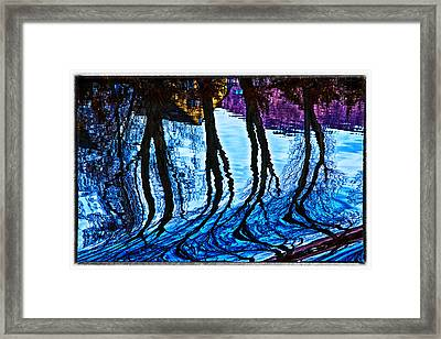 Water Spirits On Rhine Framed Print