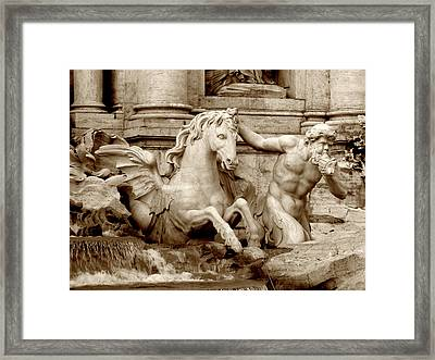 Water Stallion Framed Print