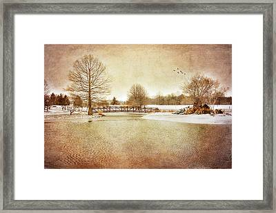 Framed Print featuring the photograph Water Under The Bridge by Mary Timman