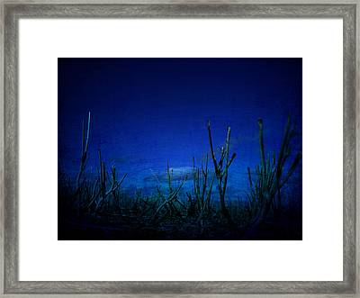 Water World Framed Print by Empty Wall