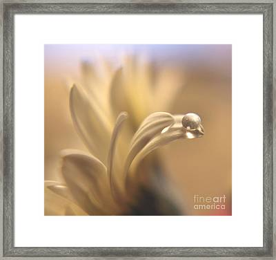 Waterbead Framed Print by Wendy Riley- Athans