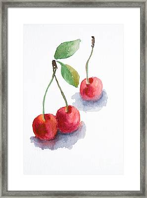 Watercolor Cherry  Framed Print