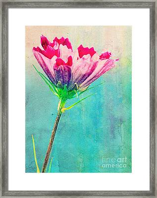 Watercolor Flower Framed Print by Billie-Jo Miller