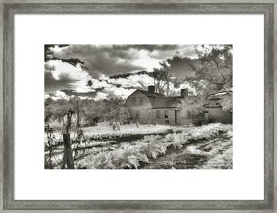 Watercolor In Black And White Framed Print