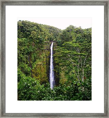 waterfall Hawai Framed Print by Luis and Paula Lopez