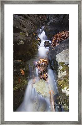 Waterfall In Shenandoah National Park Framed Print by Dustin K Ryan