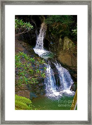Waterfall In The Currumbin Valley Framed Print